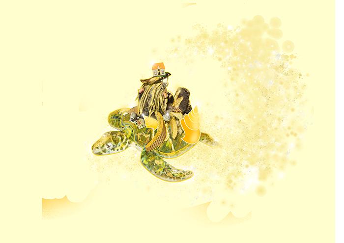 skildpadde-sma